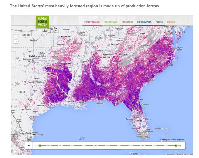 Global Forest Watch, Mapa para Rastrear la Deforestacion Mudial
